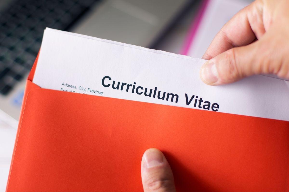 La importancia del currículum para buscar empleo